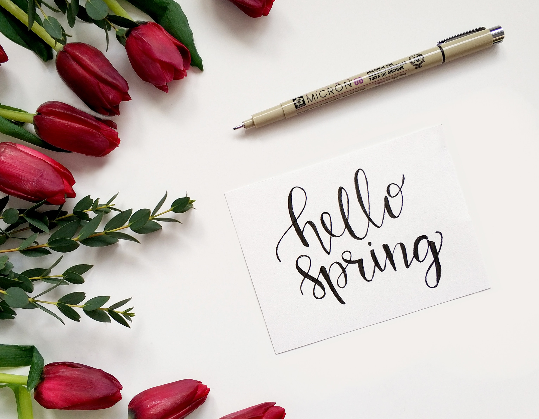 Spring Data JPA - Query Methods | amitph